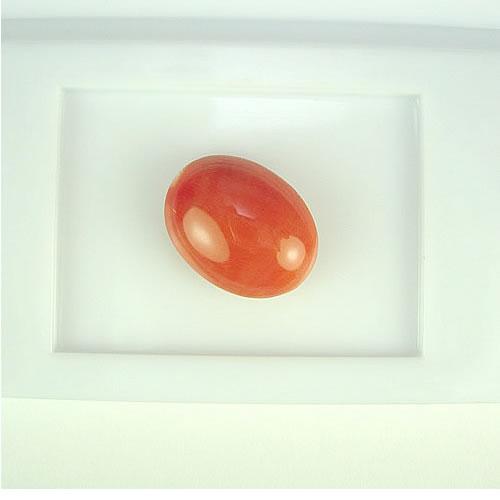 桃色珊瑚 15×12mm 小判 ジュエリールース ad339 画像
