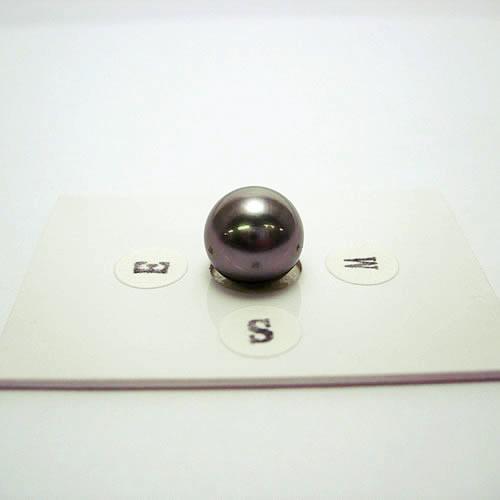 タヒチパール 10.5mm ジュエリールース ad456