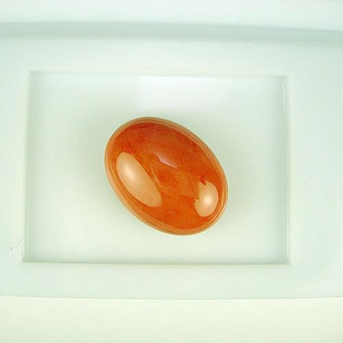 桃珊瑚 17×13mm 小判 ジュエリールース ad611 画像