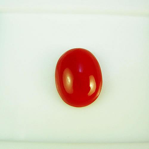 血赤珊瑚 11×9mm 小判  ジュエリールース ad873