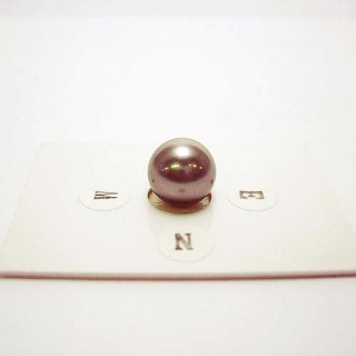 タヒチパール 10.5mm ジュエリールース ad900 画像