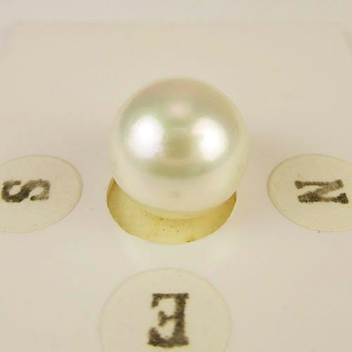 アコヤパール  超大玉 10.5mm  ジュエリールース bd577 画像