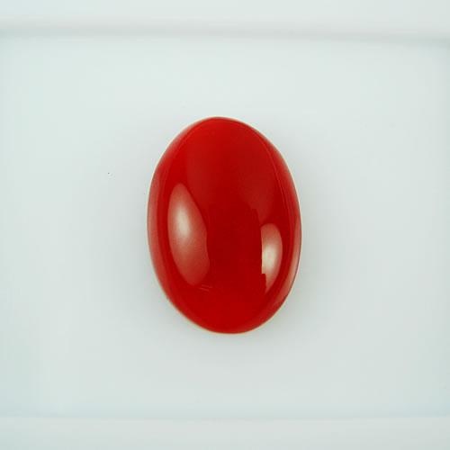 血赤珊瑚 14×10mm 小判 ジュエリールース dg131