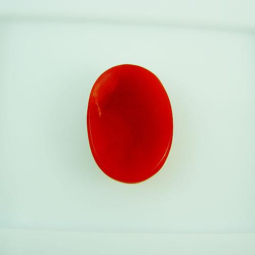血赤珊瑚 14×10mm 小判 ジュエリールース dg138 画像