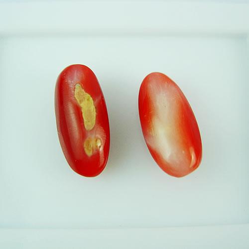 血赤珊瑚 14×7mm ドロップ2ps ジュエリールース dg144 画像