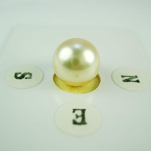 アコヤパール 9.5mm ジュエリールース dg318 画像