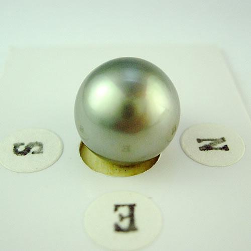 タヒチパール 12.1mm ラウンド ジュエリールース dg584 画像