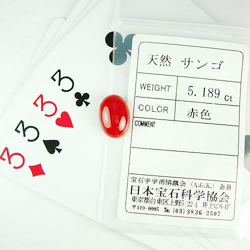 血赤珊瑚 15×11mm 小判 ジュエリールース dg615 画像