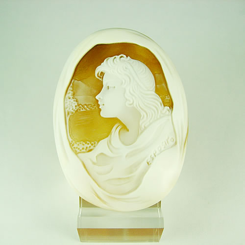 シェルカメオ 手彫り 55×40mm ジュエリールース dg633
