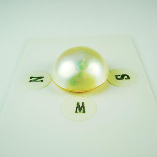 マベパール  14.8mm ジュエリールース dg672 画像