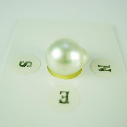 南洋パール 10.1mmバロック ジュエリールース dg688 画像