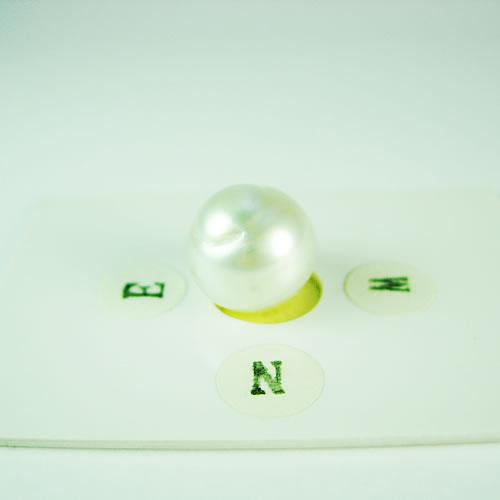 南洋パール 11mmバロック ジュエリールース dg763 画像