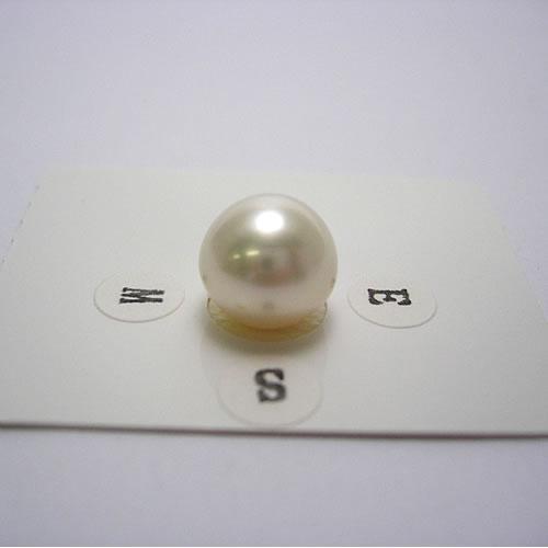 南洋パール 11.3mm ジュエリールース dg927