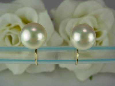 k18 ハープイヤリング パール(7.5mm)ジュエリー