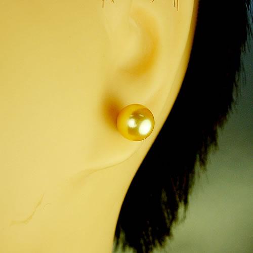 IPチタン 国産アコヤパール7.0mm(ゴールド染) ピアスジュエリー mp70k 画像