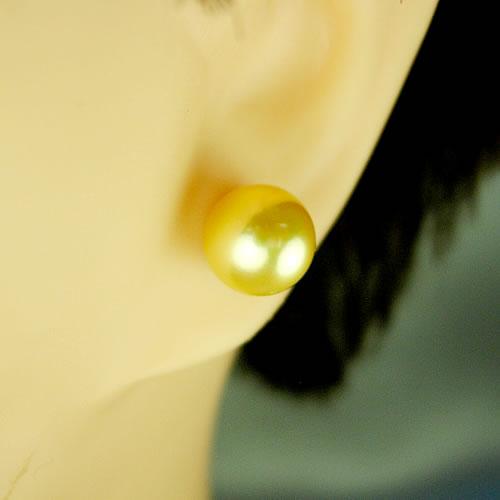 IPチタン 国産アコヤパール 8.0mm(ゴールド染) ピアスジュエリー mp80k 画像